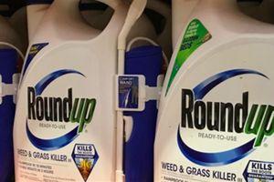 Thuốc diệt cỏ gây ung thư, Monsanto phải đền 2 tỷ USD