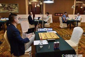 Kỳ thủ Việt Nam bị xử thua ở giải cờ tướng thể thao trí tuệ thế giới