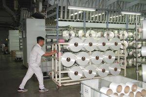 Nhà máy Xơ sợi Đình Vũ quản lý chất lượng như thế nào?