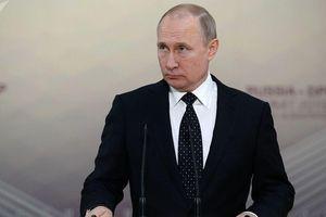 Tổng thống Putin: Chuyến thăm của Pompeo sẽ góp phần phát triển quan hệ Mỹ - Nga