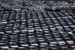 Tổng thống Mỹ có kế hoạch hoãn áp thuế ô tô nhập khẩu