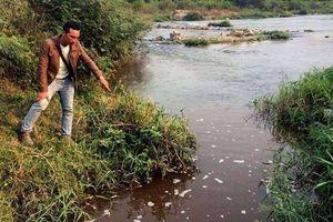 Nhà máy đường xả thải gây ô nhiễm sông Ba bị phạt gần 500 triệu đồng