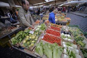 EC chia rẽ trong hướng giải quyết vấn đề tài chính công của Italy