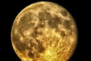Mặt Trăng đang ngày càng co lại 'như trái nho khô'
