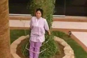 Nữ giúp việc bị trói vào cây vì để quên đồ ngoài trời