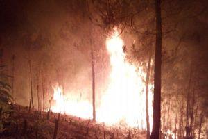 Điện Biên: Cháy rừng trong đêm, huy động hàng trăm người tham gia dập lửa