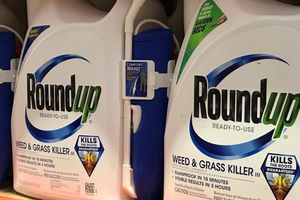 Công ty thuốc trừ cỏ bị phạt 2 tỷ USD trong vụ kiện ung thư