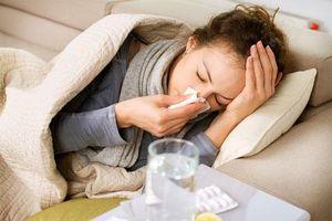 Bang Queensland đối mặt với dịch cúm mùa lớn nhất lịch sử