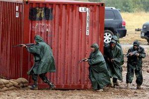 Đức, Hà Lan dừng huấn luyện quân sự ở Iraq do đe dọa an ninh