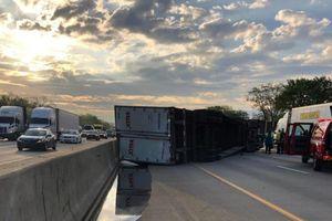 Xe tải chở 20 tấn mật ong lật nhào trên đường cao tốc Mỹ