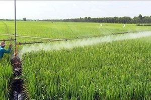 Ðẩy mạnh ứng dụng thuốc bảo vệ thực vật sinh học vào sản xuất