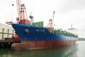 Đấu giá tàu Vinalines RUBY: 'Công ty đấu giá Thăng Long sai quy trình'?