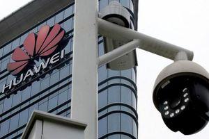 Bị Tổng thống Trump 'cấm cửa', Huawei phản pháo