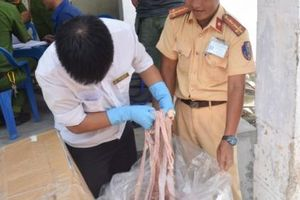 Thừa Thiên – Huế: Phát hiện hơn 1,6 tấn nội tạng không rõ nguồn gốc