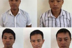 Vụ phá rừng đặc dụng ở Phong Nha - Kẻ Bàng: Khởi tố và bắt tạm giam thêm 6 đối tượng