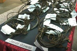 Hai người Việt săn trộm ở Malaysia chịu mức phạt kỷ lục