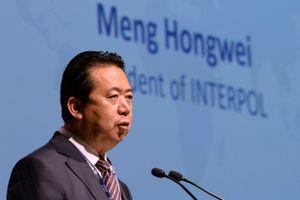 Trung Quốc cảnh báo Pháp về việc cho vợ cựu Chủ tịch Interpol tị nạn chính trị