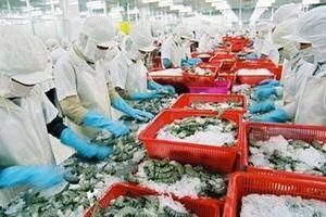 Giá vốn tăng cao kéo lãi sau thuế của Thủy sản Minh Phú giảm 26% trong quý I/2019