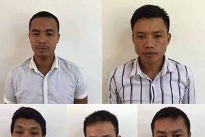 Phê chuẩn khởi tố thêm 6 đối tượng phá rừng Phong Nha - Kẻ Bàng