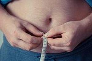 Phát hiện protein do gan tiết ra gây béo phì