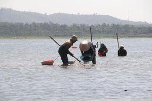 Đắk Lắk: Đổ xô đi đãi hến mùa nước cạn ở hồ Ea Kao