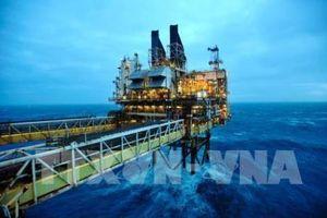 Giá dầu châu Á ngày 16/5 tăng phiên thứ ba liên tiếp