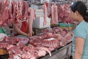 Dịch tả lợn châu Phi: Trang trại chăn nuôi kêu cứu vì bị 'ngăn sông, cấm chợ'