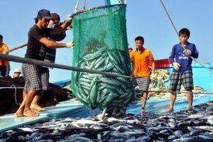 Vi phạm hành chính trong lĩnh vực thủy sản bị phạt tới 1 tỷ đồng