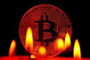Giá bitcoin 'lao dốc' một ngày sau khi vượt 8.000 USD