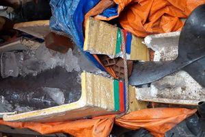 Ngư dân đồng ý giao cá nược Minh Hải cho Bảo tàng Thiên nhiên Việt Nam