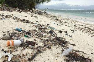Hòn đảo ngoài khơi xa Australia đón nhận... 414 triệu mảnh rác thải nhựa