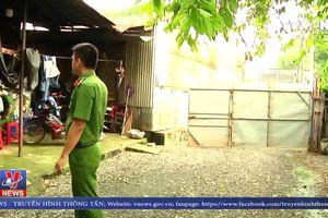 Phát hiện nhiều trường hợp giết mổ trái phép tại Đồng Nai