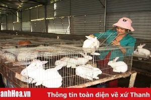 Huyện Triệu Sơn: Xây dựng 27 mô hình phát triển sản xuất