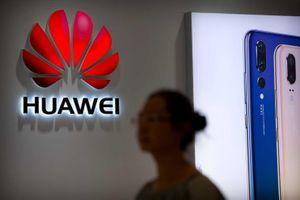 Chính quyền Trump nới lỏng 'vòng kim cô' trên đầu Huawei