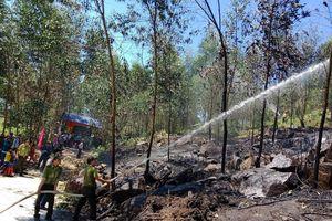 Diễn tập xử lý các tình huống cháy rừng