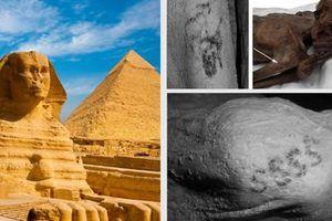 Vì sao người Ai Cập cổ đại mê mẩn việc xăm mình?