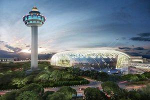 Đến Singapore không muốn rời sân bay vì 'viên kim cương' này