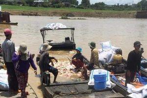 Đồng Nai: Xác định nguyên nhân hơn 300 tấn cá bè chết chết trắng trên sông La Ngà