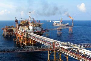 Tỉnh nào được gọi là 'vựa dầu mỏ' lớn nhất Việt Nam?