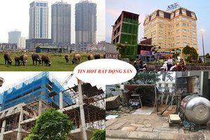 Ồ ạt mua đất là 'chôn' tiền vào đất; Alibaba lại bị cảnh báo rao bán dự án 'ảo'