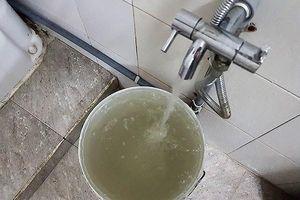 Đà Nẵng: Người dân bức xúc vì nước máy đục ngầu, hôi thối như… nước cống