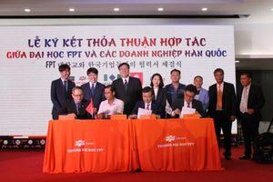 Đại học FPT Cần Thơ ra mắt ngành Ngôn ngữ học và văn hóa Hàn Quốc