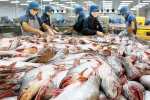 Nhật Bản vào top 10 thị trường nhập khẩu cá tra lớn nhất của Việt Nam