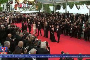 Khan vé mùa liên hoan phim Cannes
