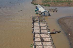 Bộ TN & MT vào cuộc vụ cá bè chết trên sông La Ngà