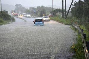 Nhật Bản giải cứu khoảng 200 người bị mắc kẹt trên núi do mưa lớn