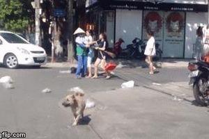 Cô gái trẻ lao vào đánh công nhân vệ sinh môi trường sau lời nhắc nhở gây bức xúc