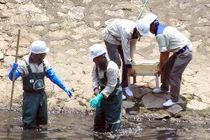 Người dân nói về công nghệ làm sạch sông Tô Lịch sau 3 ngày thử nghiệm