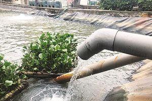 Urenco7 xả thải chưa qua xử lý ra sông Nhuệ: Nhiều thông tin chưa chính xác