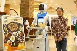 Qatar quyết định ứng dụng công nghệ robot vào việc phục vụ